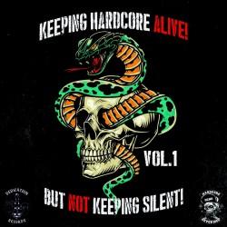 "CD. V/A ""Keeping hardcore..."