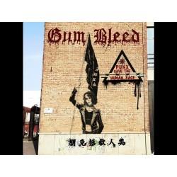 "CD. Gum Bleed ""Punx save..."