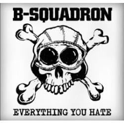 "CD. B-Squadron ""Everything..."