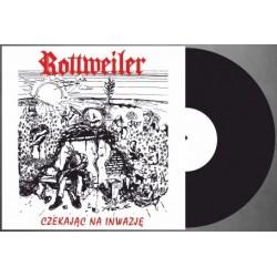 """LP. Rottweiler """"Czekając na..."""